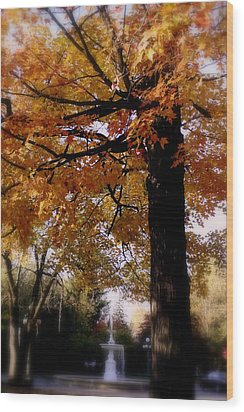 Fall Colors And Fountain Wood Print by Martin Morehead
