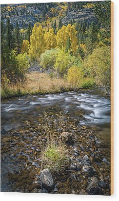 Wood Print featuring the photograph Fall Colors At South Fork Bishop Creek by Alexander Kunz