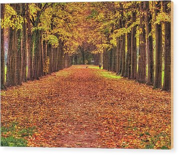 Fall Colors Avenue Wood Print
