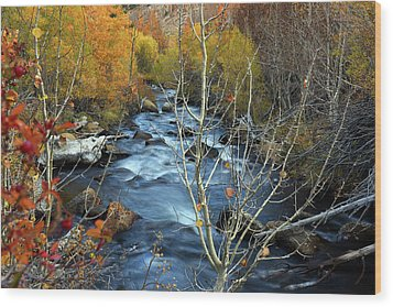 Wood Print featuring the photograph Fall Colors Bishop Creek by Dung Ma