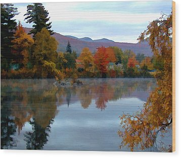 Fall Colors Wood Print by Dan McManus