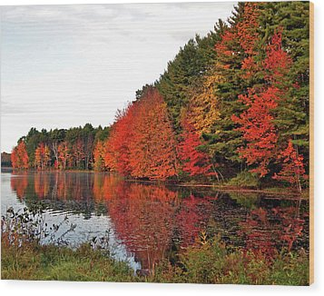 Fall Colors In Madbury Nh Wood Print by Nancy Landry