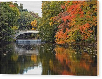 Fall Colors In New York State Wood Print by Don Mennig