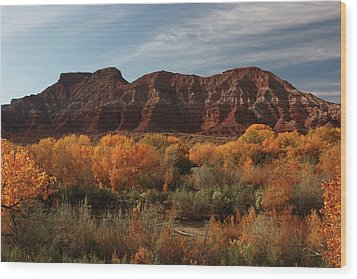 Fall Colors Near Zion Wood Print