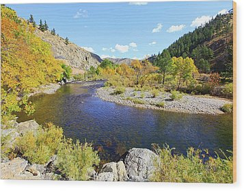 Fall Colors On The Poudre Wood Print