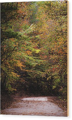Wood Print featuring the photograph Fall Colors On The Trail by Shelby Young