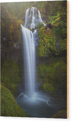 Wood Print featuring the photograph Fall Creek Falls by Darren White