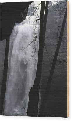 Wood Print featuring the photograph Fall Creek Falls Tn by Lori Miller