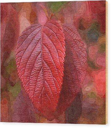 Fall Crimson Wood Print by Nick Kloepping