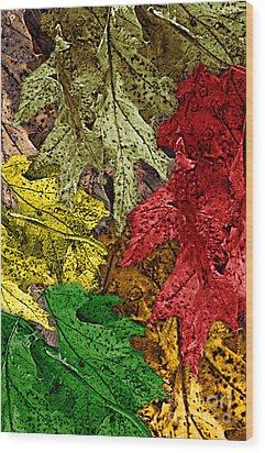Fall Down Wood Print by Tom Romeo
