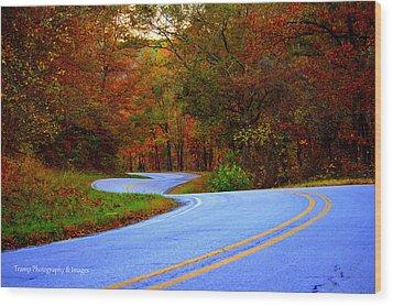 Fall Drive Wood Print