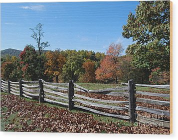 Fall Fence Wood Print by Eric Liller