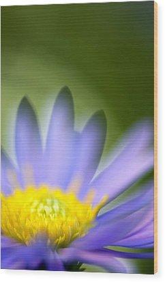 Fall Flower Wood Print by Silke Magino