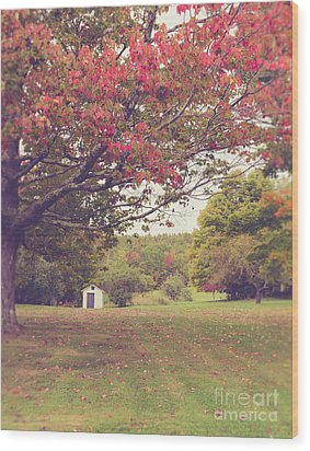 Fall Foliage And Old New England Shed Wood Print by Edward Fielding