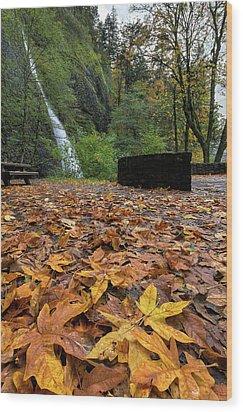 Fall Foliage At Horsetail Falls Wood Print by David Gn