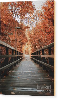 Wood Print featuring the photograph Fall Foliage In The Heart Of Berlin by Ivy Ho