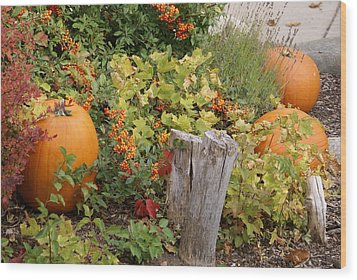 Fall Garden Wood Print by Cynthia Powell