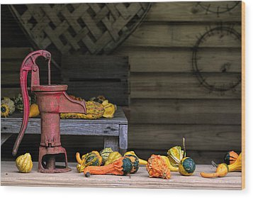 Fall Gourds Wood Print