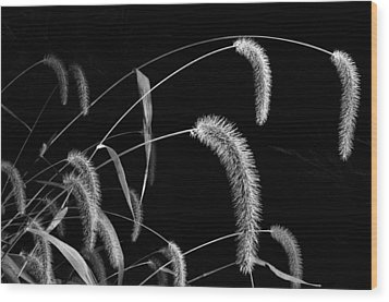 Fall Grass 3 Wood Print by Mark Fuller