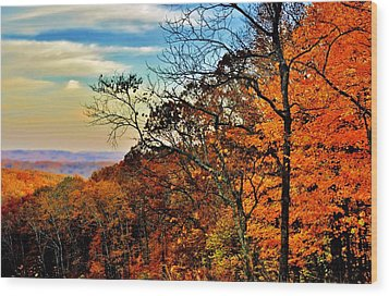 Fall Horizon Wood Print