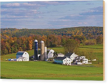 Fall In Amish Country Wood Print