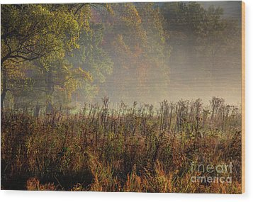 Wood Print featuring the photograph Fall In Cades Cove by Douglas Stucky