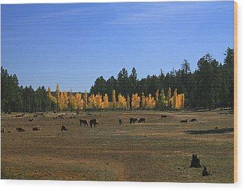Fall In Line Wood Print