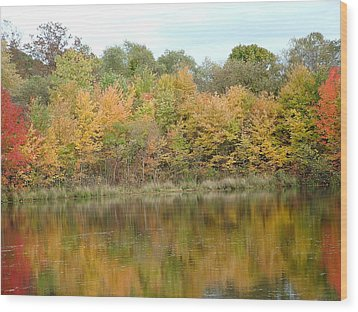 Fall In South Jersey Wood Print by D R TeesT