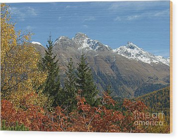 Fall In St. Moritz Wood Print