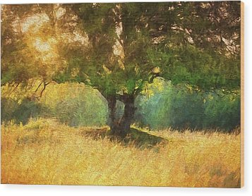 Fall In The Meadow Wood Print