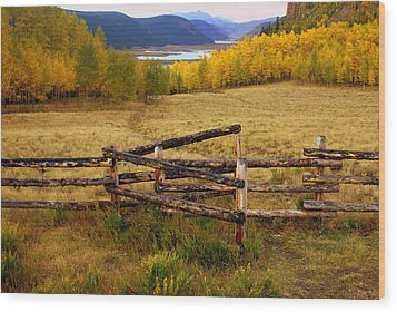Fall In The Rockies 2 Wood Print by Marty Koch