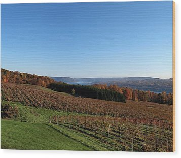 Fall In The Vineyards Wood Print