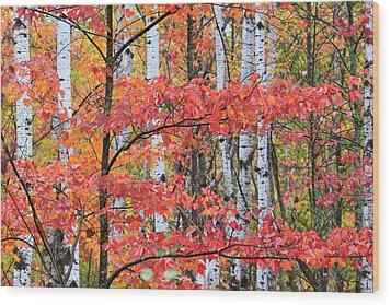 Fall Layers Wood Print