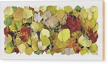 Fall Leaf Vignette Wood Print by JQ Licensing
