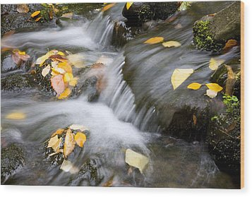 Fall Leaves In Rushing Water Wood Print by Craig Tuttle