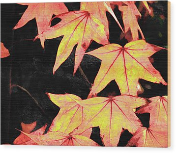 Fall Leaves Wood Print by Robert Ball