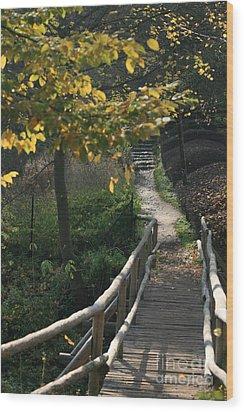 Fall Wood Print by Marta Grabska-Press