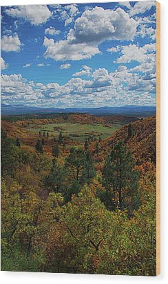 Fall On Four Mile Road Wood Print