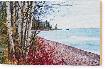 Fall On Lake Superior Wood Print