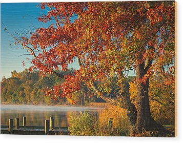 Fall On The Patuxent Wood Print