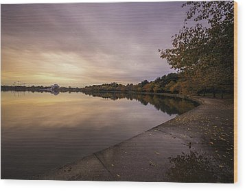 Fall On The Tidal Basin Wood Print