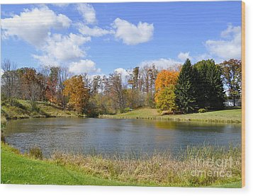 Fall Pond Wood Print by Penny Neimiller