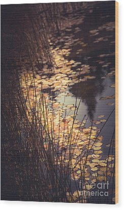 Wood Print featuring the photograph Fall Pond by The Forests Edge Photography - Diane Sandoval