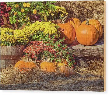Fall Pumpkins Wood Print by Carolyn Marshall