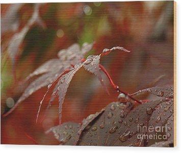 Fall Rain Wood Print