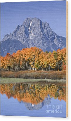 Fall Reflection At Oxbow Bend Wood Print by Sandra Bronstein