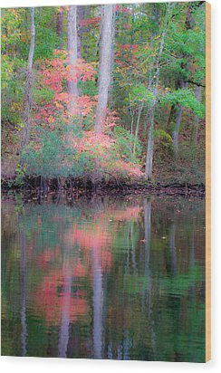 Wood Print featuring the photograph Fall Reflections by Bob Decker