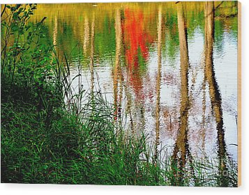 Wood Print featuring the photograph Fall Reflections by Elfriede Fulda