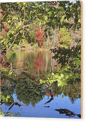 Fall Reflections Wood Print by Nancy Landry