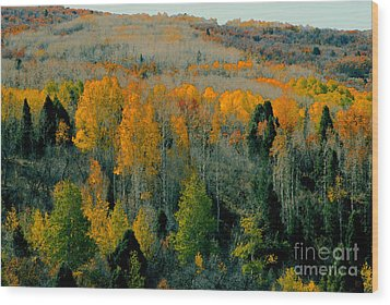 Fall Ridge Wood Print by David Lee Thompson